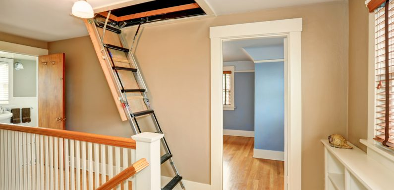 Choosing the Best Loft Ladder