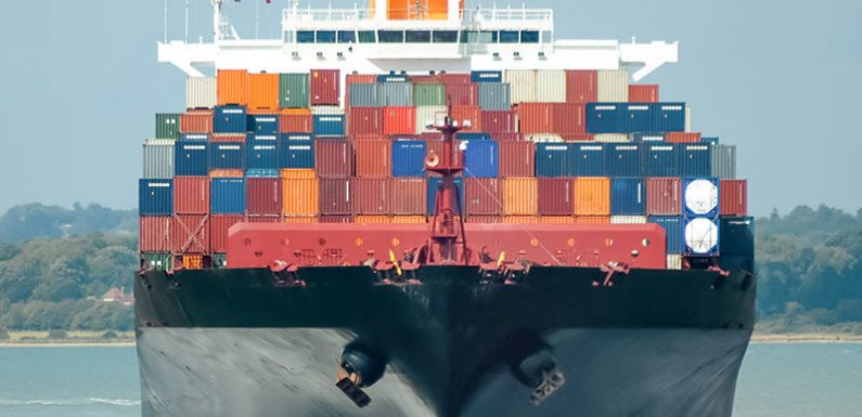 What Are Your Sea Freight Needs?